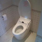 Toto Neorest 550 Elongated Bidet 2