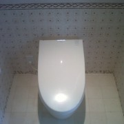 Toto Neorest 550 Elongated Bidet 1